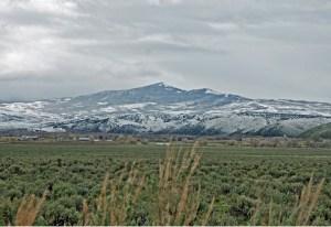 Baker's Peak