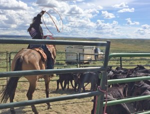 Meanwhile, back at the Powder Flat Ranch...