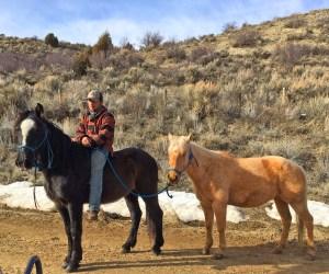 Casey training horses