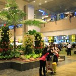 Transfer at once to the Singapore Changi International Airport