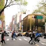 小龍寶和臺北中山站主泉路茶葉、按摩店與當地購物