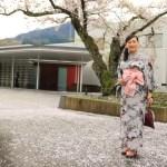 "And exploring the Park decorates ""garaku"" seasons in yukata pleasantness and including foot bath"