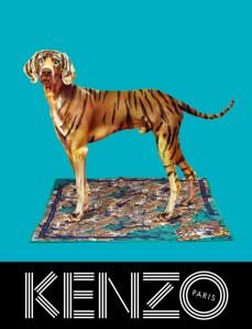 xkenzo-fall-campaign3.jpg,qresize=640,P2C834.pagespeed.ic._YxtbbkyI8