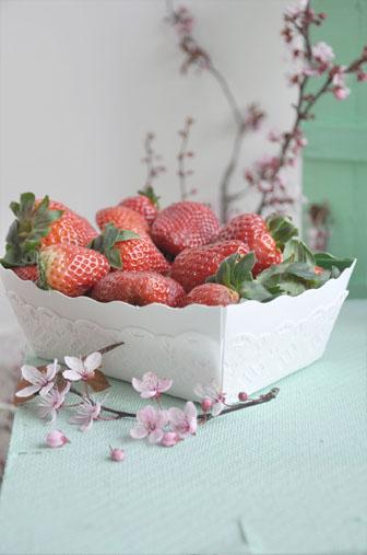 fraise, picnic pastel en interieur
