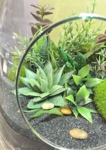 détails diy terrarium