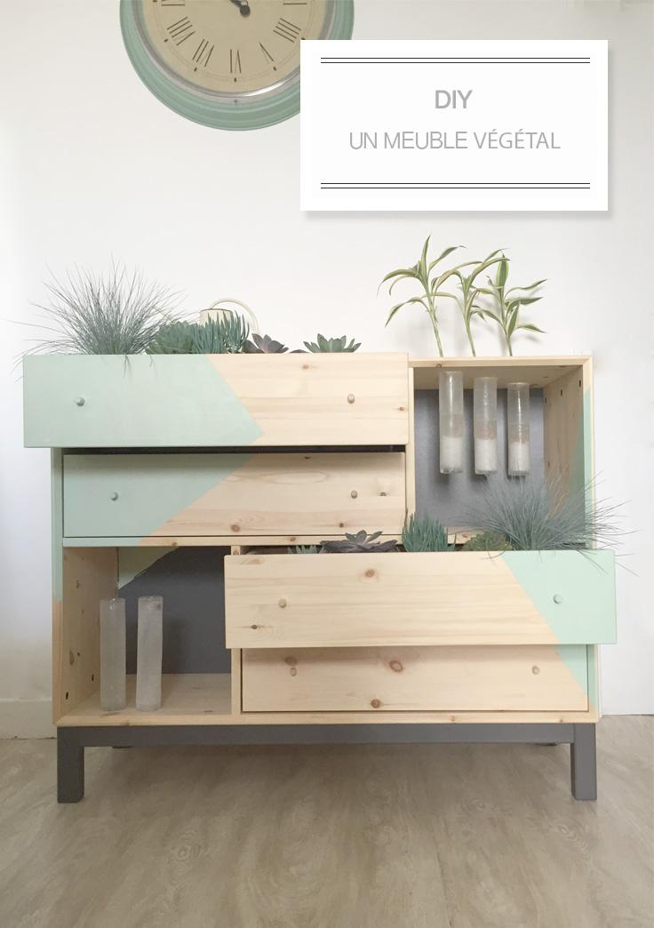 diy meuble végétal