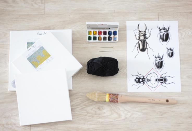 insecte DIY cabinet de curiosité