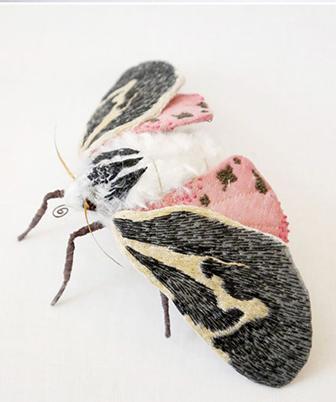 butterfly details la délicate parenthèse