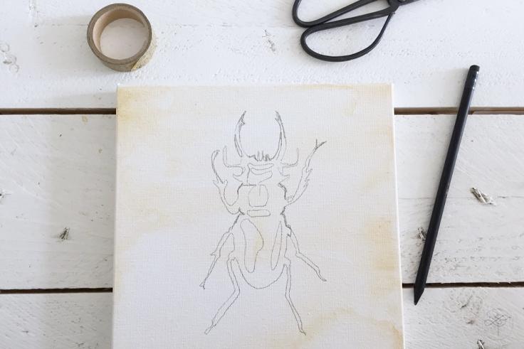 dessin insecte DIY