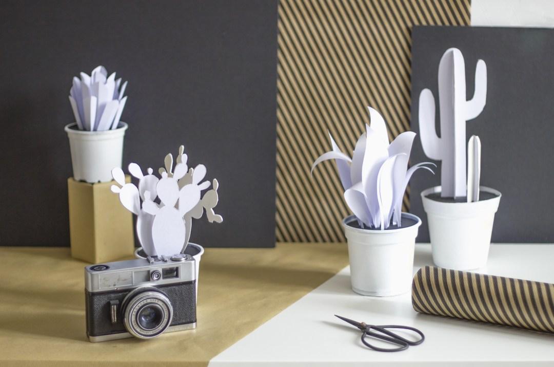 home page réalisation tutoriel déco cactus en papier