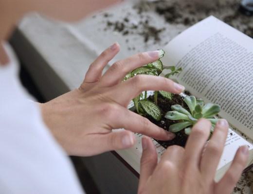 Atelier DIY créatifs avec Le Bon Coin et Oui Are Makers- créer un livre végétal