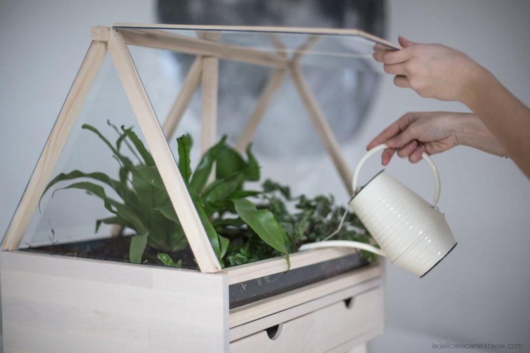 Création DIY serre végétale d'intérieur ikea hack installation des végétaux