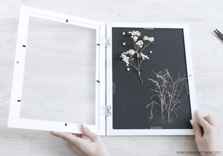 création herbier DIY ikea hack
