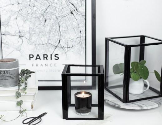 Home DIY création serre filaire minimaliste