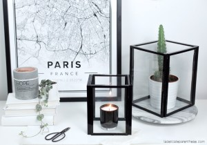 DIY création serre filaire minimaliste