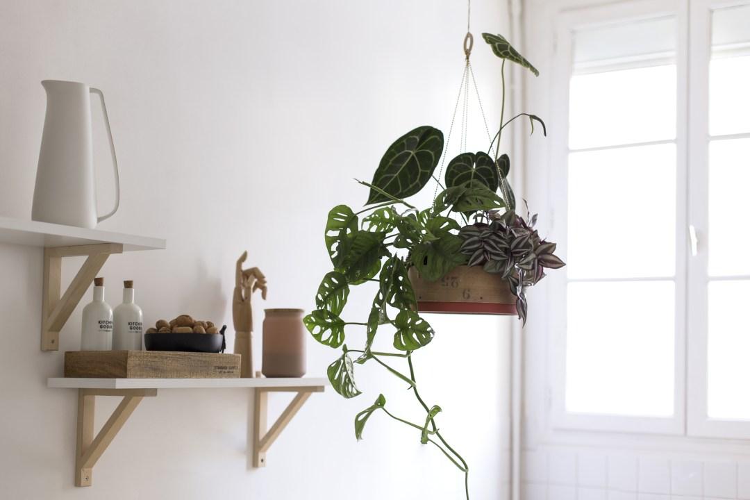 Suspension tamis création végétale Do It Yourself
