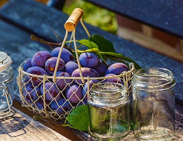 prunes rouges dans un panier