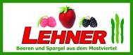 www.lehners-beeren.at