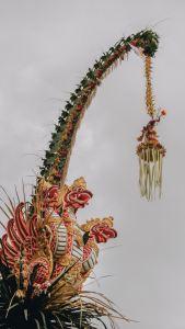 Bali_LNTS