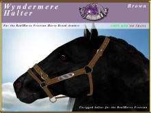 E-RH-Friesian-wyndermereHalter-Brown