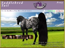 R-RH-Pony-SaddlebredTail