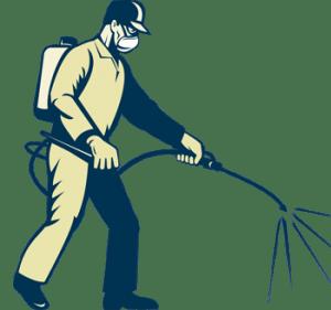 A Bisceglie la sanificazione e la manutenzione del verde in tutte le scuole comunali