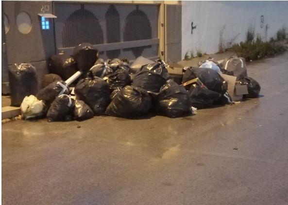 Cumuli di spazzatura nella zona artigianale di Bisceglie, da sei giorni non viene effettuato il ritiro