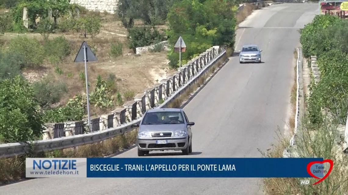 Terremoto, Spina in linea con Boccia (Pd): «Ha ragione, va fatta verifica statica per il Ponte Lama»