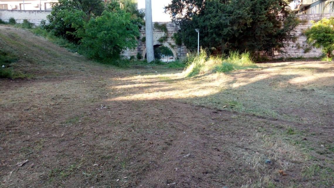 Orto Schinosa, tagliata erba infestante. L'apprezzamento di Pro Natura