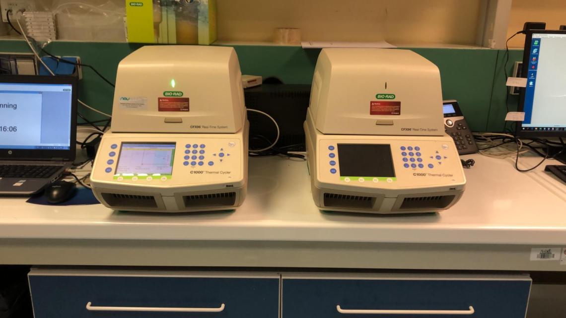 Analisi tamponi Asl Bt: attiva seconda apparecchiatura a Barletta