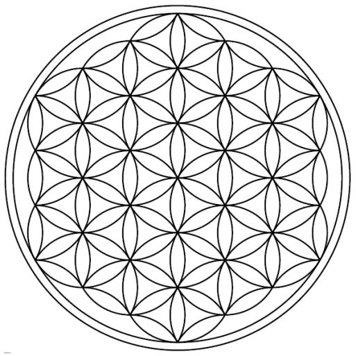 Flower-of-Life-19circles36arcs-enclosed