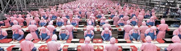 """Manufacturing #17"", Deda Chicken Processing Plant, Dehui City,"