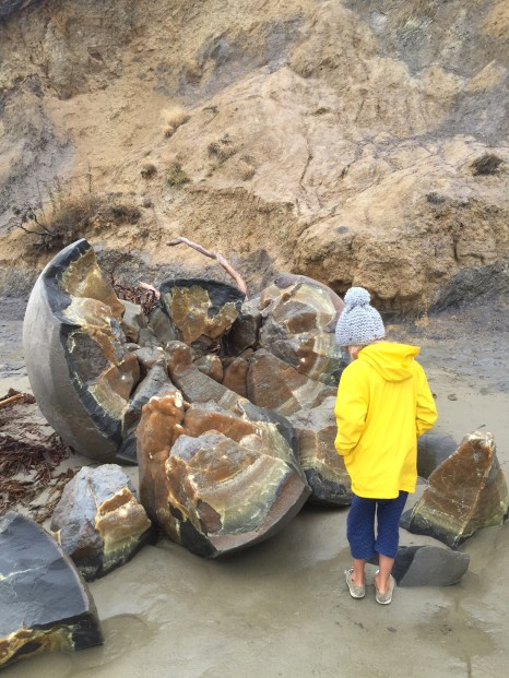 ivy-at-moeraki-boulders