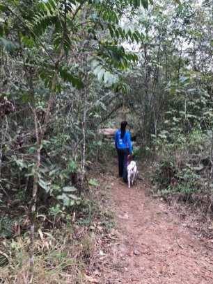 Minhas cachorras, Maga e Juju, se esbaldam em trilhas e parques da cidade