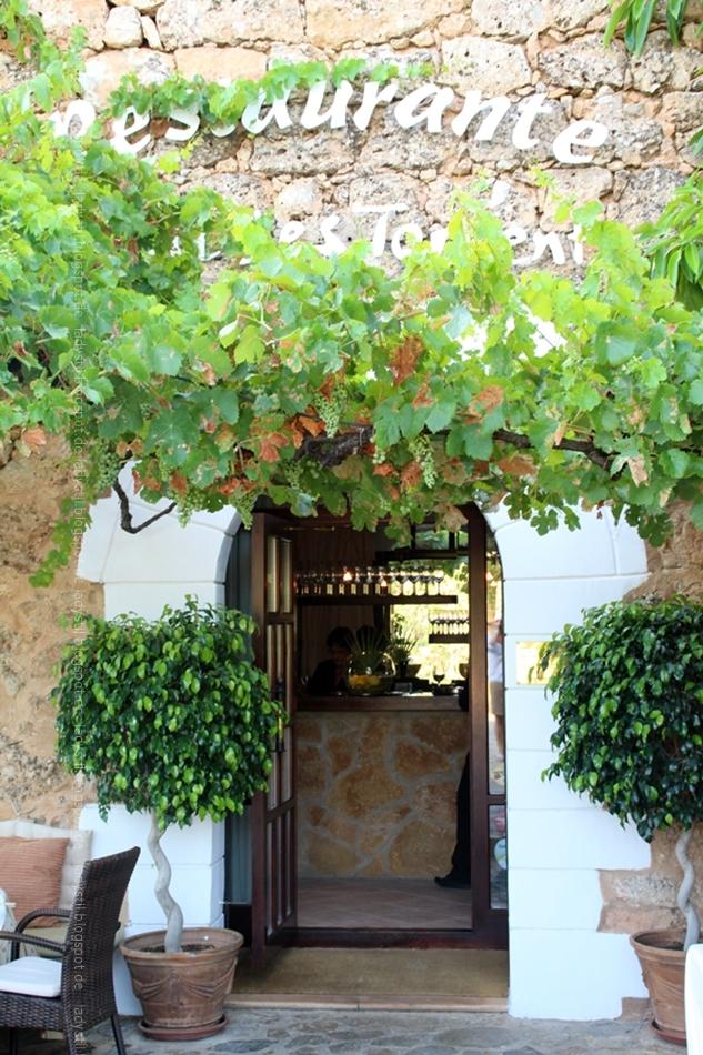 Blick auf den von Wein umrankten Eingang des Restaurants