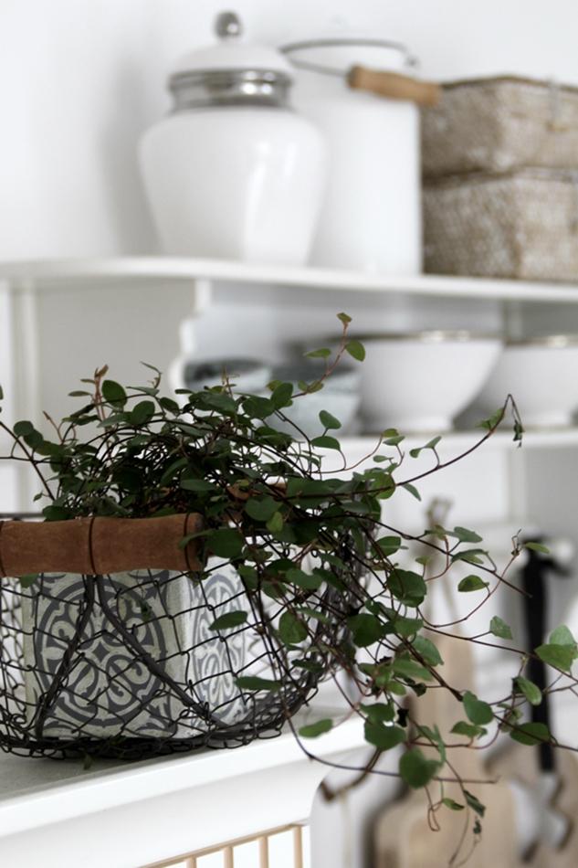 Küchenimpressionen mit Grünpflanze und Blick auf das weiße Wandregal mit Accessoires von House of Ideas