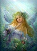 angelo dei fiori