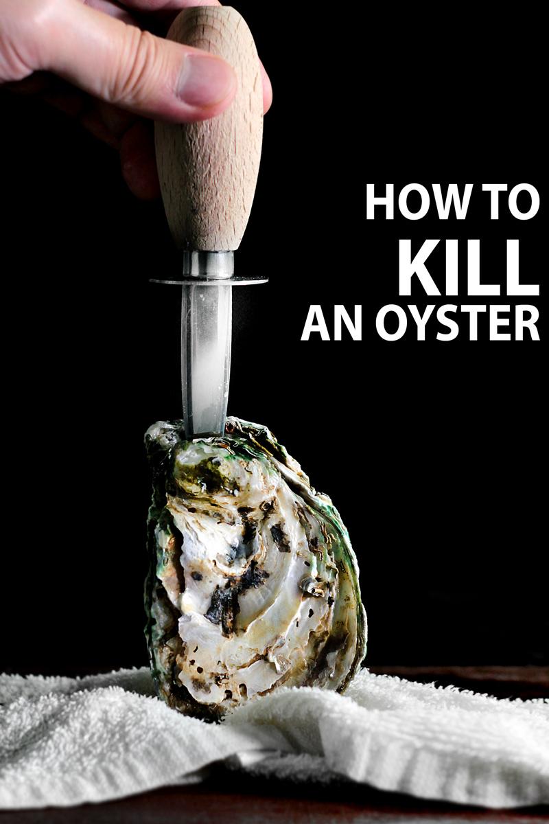 shuck-oyster-featured-header-2
