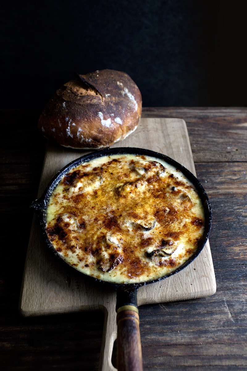 three cheese oyster gratin11