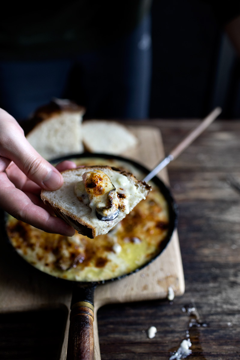 three cheese oyster gratin14
