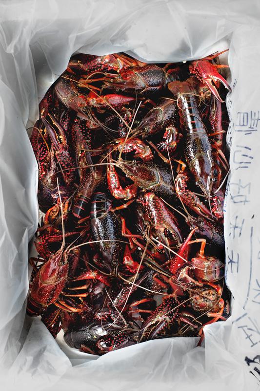 mala-butter-crayfish08