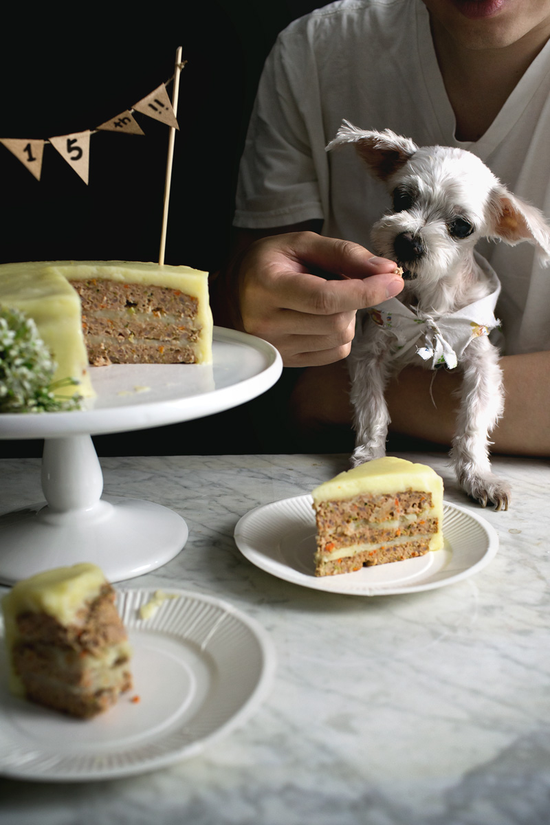 Sensational Lady And Pups Doggy Meatloaf Birthday Cake For Big 15Th Funny Birthday Cards Online Chimdamsfinfo