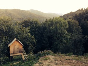 boss-fight-stock-images-photos-free-hut-in-forest