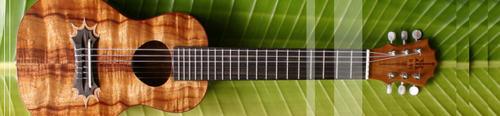 020307_ukulele