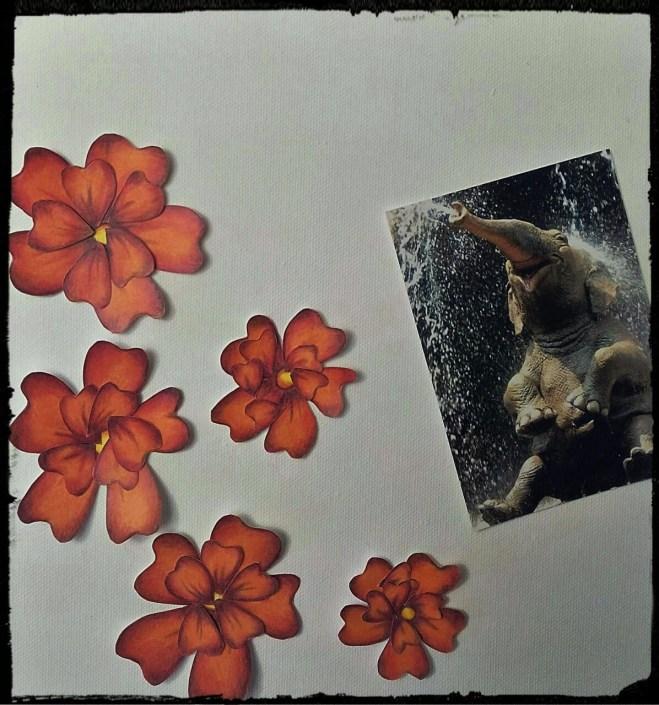 Flowers - Part 3 (2)