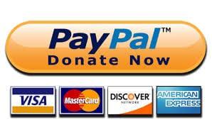 paypal donation ladybossblogger