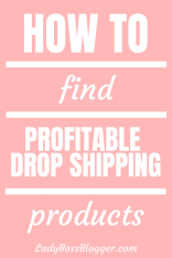 Profitable Drop Shipping Products