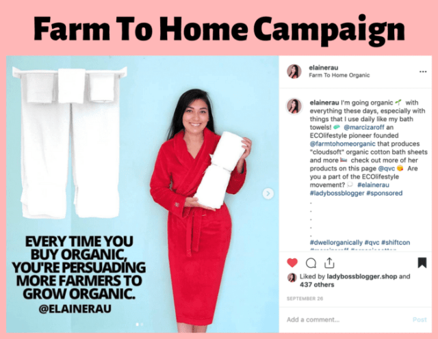 elaine rau influencer campaign successful15