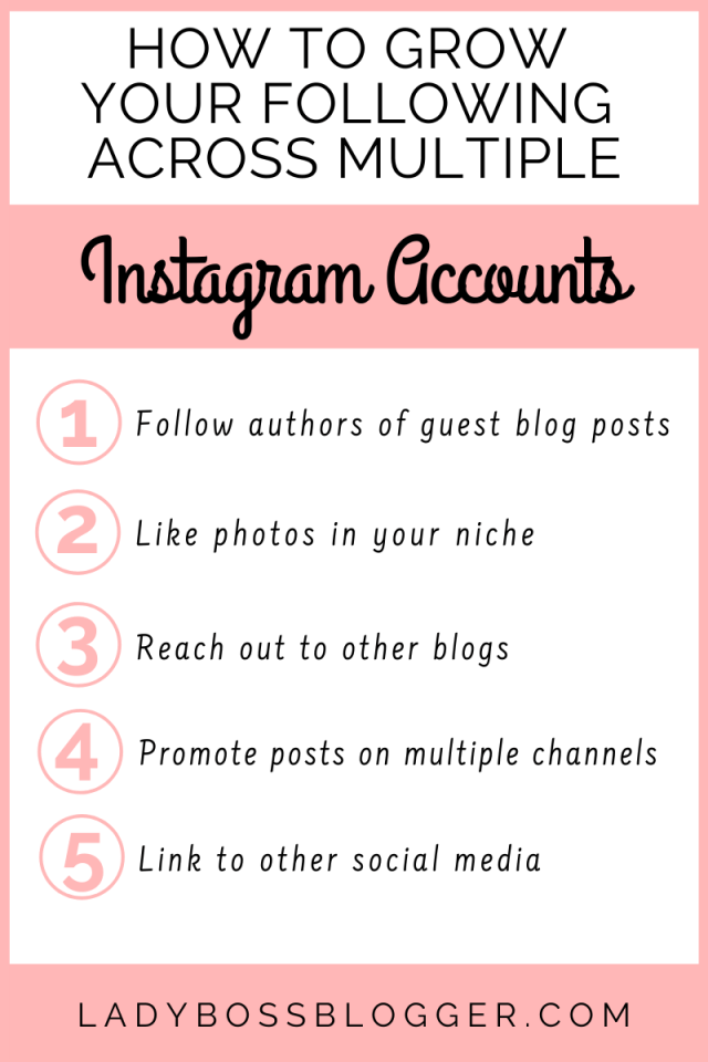 grow following multiple instagrams ladybossblogger.com