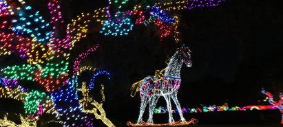 A Season of Light – Holiday Light Displays Around Phoenix